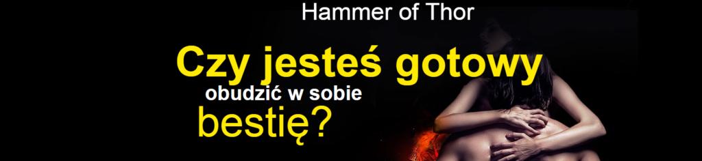 hammer-thor8