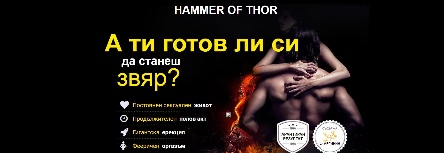 hammer-thor-bulgaria