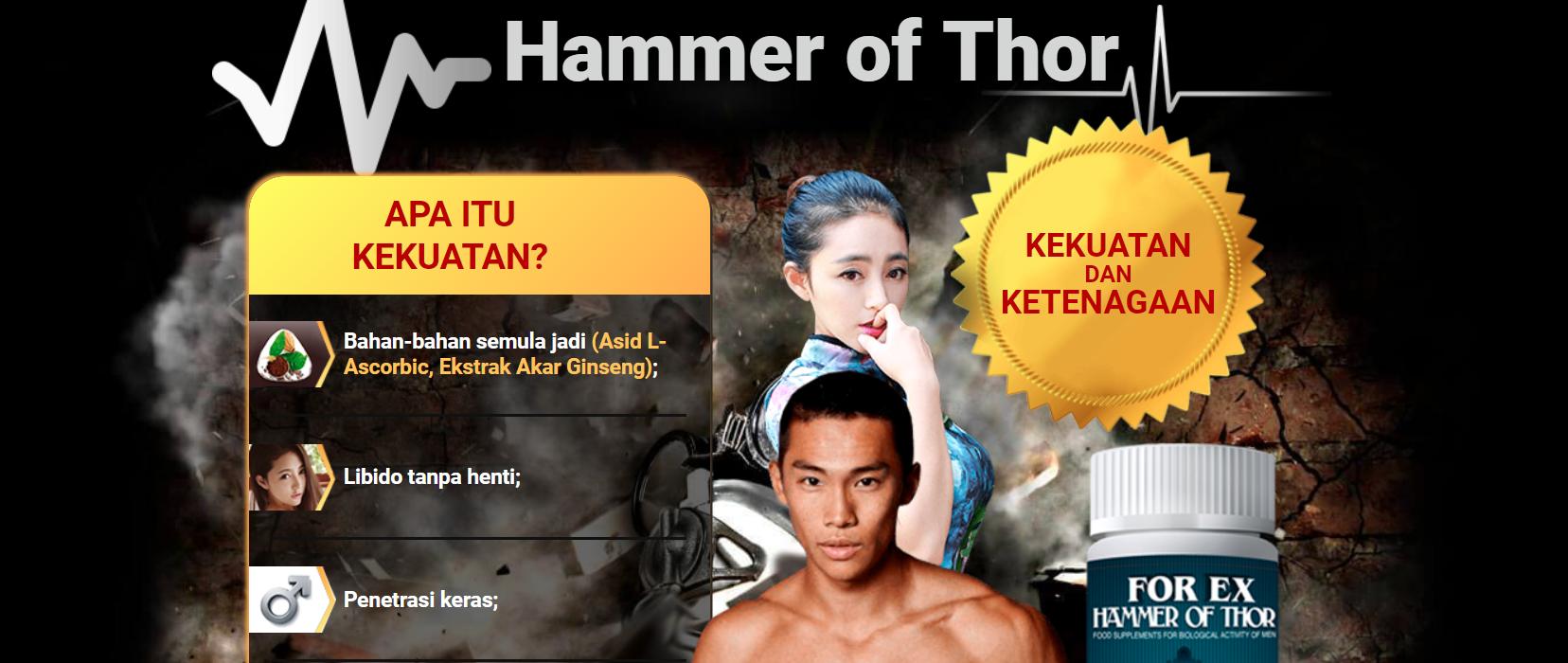 hammer of thor official distributor malaysia ulasan harga
